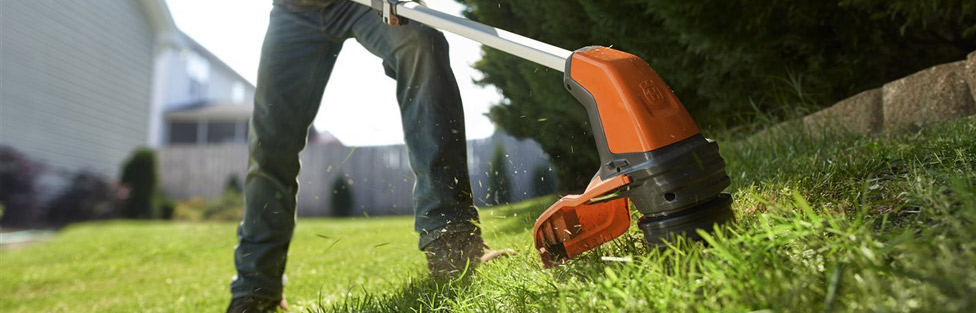 5 steps to wake your lawn up for spring