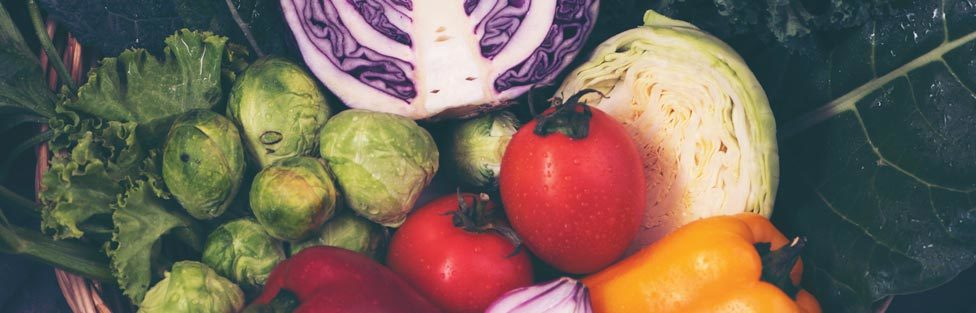 The China Study: Benefits of a Whole-Food, Plant-Based DIet